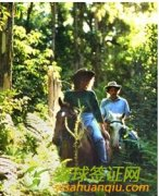 澳洲旅游最值得去的骑马景点