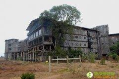 肯尼亚树上旅馆 肯尼亚旅游攻略